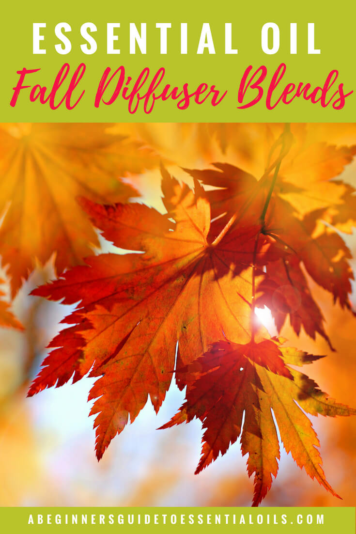 Fall Essential Oil Diffuser Blends {and a simple formula for creating your own blends}
